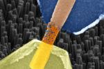 Künstliche Synapse aus Nanodrähten entwickelt
