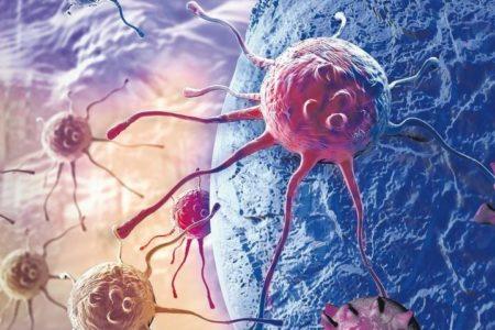 Die Zukunft der Krebsforschung