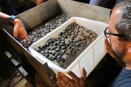 Wie hoch sind die Umweltbelastungen beim Tiefseebergbau?