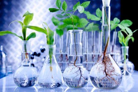 Biotech-Branche: erneut gute Finanzierungszahlen