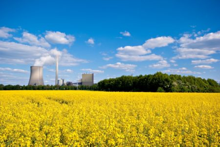 Bundesregierung fördert Bioökonomie