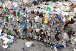 Fluoreszierende Marker könnten Effizienz im Recycling steigern