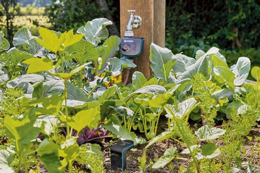 Gartentechnik: Wässern, schneiden, pflegen