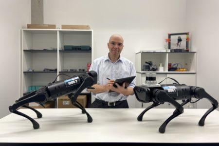 Roboterhunde schnüffeln am Bau