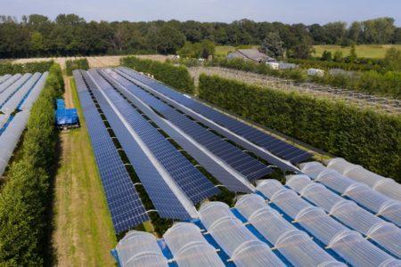Globaler Solarboom trotz Covid-19 ungebrochen